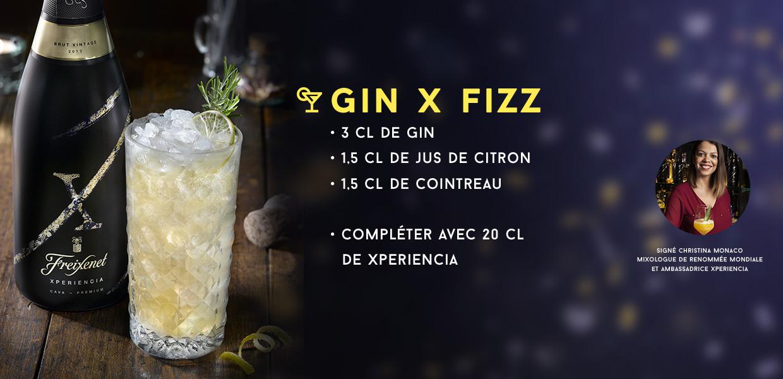 GIN X FIZZ