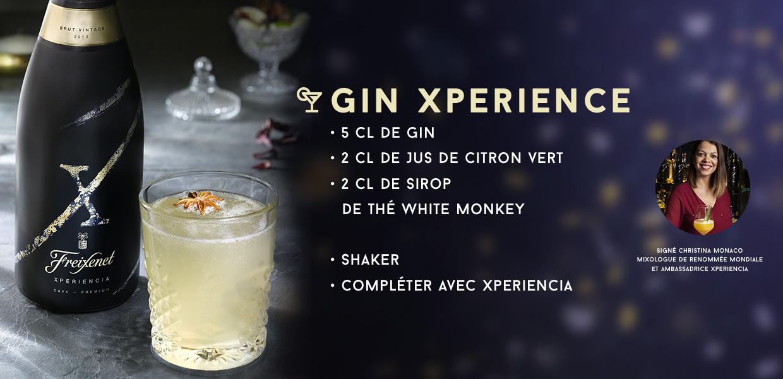 GIN XPERIENCE